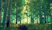 Monster-Sale bei GOG, Adventures reduziert