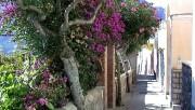 A Quiet Weekend in Capri